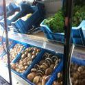 groenten in koelinh
