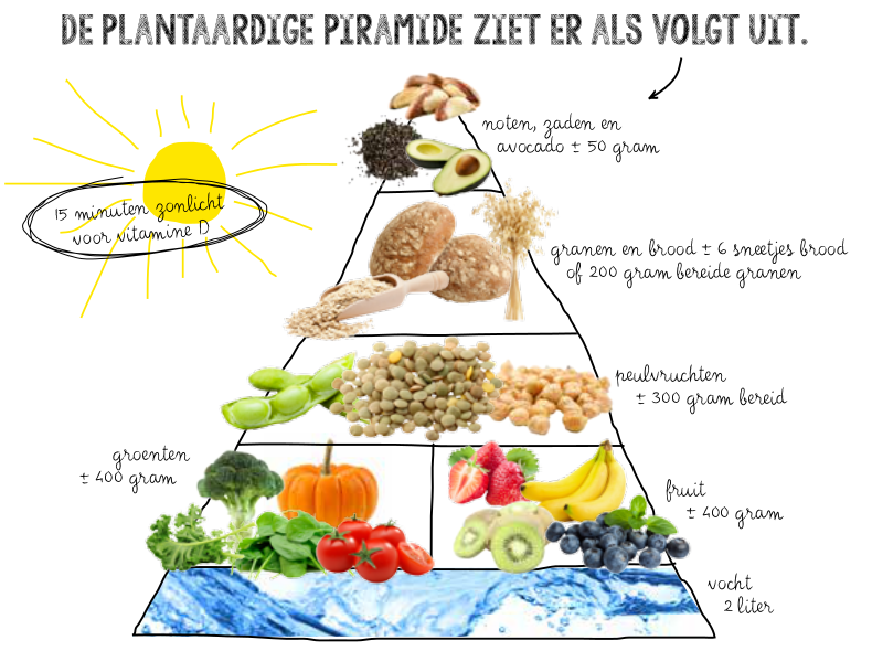 Vegan-piramide.png